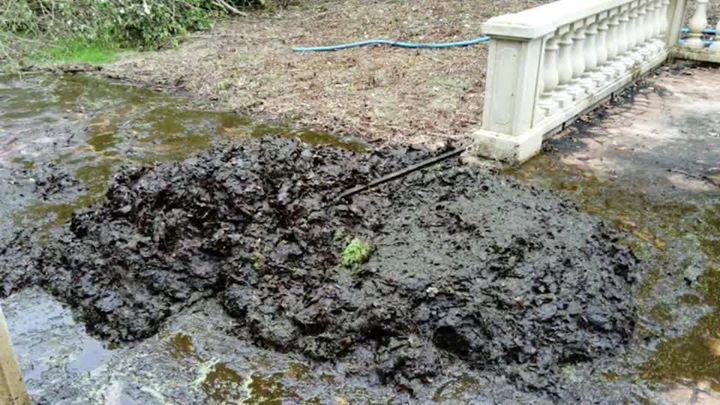 Un petit nettoyage piscine s'impose  Piscines de France c'est aussi la rénovatio…